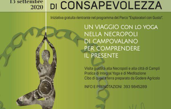 RADICI DI CONSAPEVOLEZZA – Un viaggio con lo Yoga nella Necropoli di Campovalano per comprendere il Presente